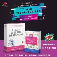 Wordpress Designing from beginners to pro
